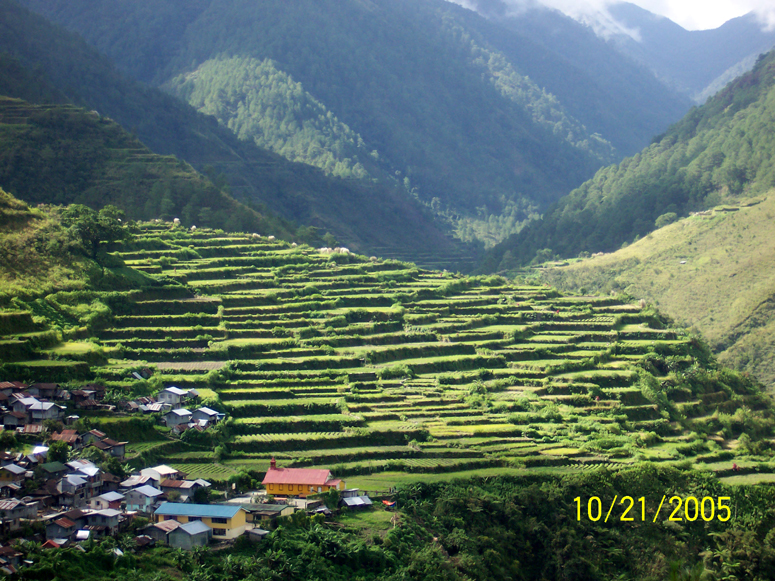 Banaue Rice Terraces - Philippines 2005